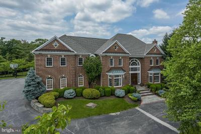 Potomac Single Family Home For Sale: 12620 Tribunal Lane