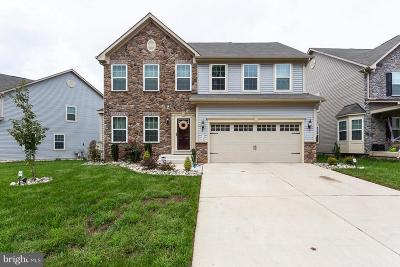 Waldorf Single Family Home For Sale: 5135 Mudville Lane