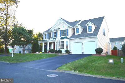 Manassas Single Family Home For Sale: 10596 Tattersall Drive