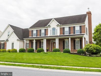 Single Family Home For Sale: 396 Ecker Drive