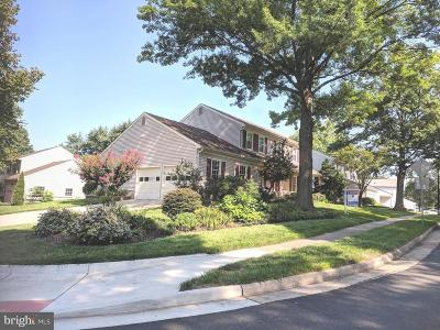 Herndon Single Family Home For Sale: 13600 Brass Harness Court