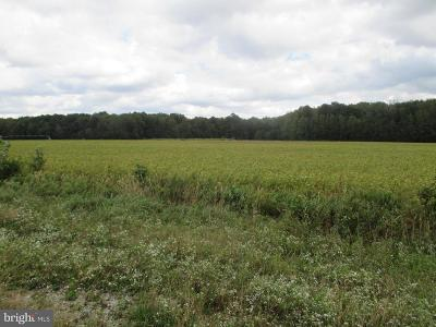 Dagsboro Residential Lots & Land For Sale