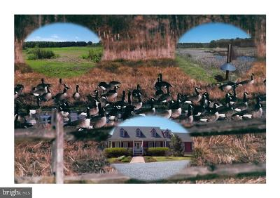 Talbot County Farm For Sale: 27542 Chloras Point Road
