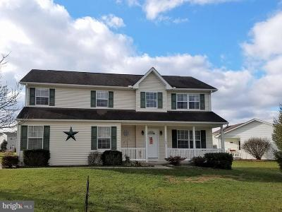 New Oxford Single Family Home For Sale: 165 Matthew Drive