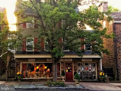 Bucks County Commercial For Sale: 103 S State Street