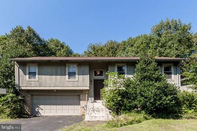 Vienna Single Family Home For Sale: 9426 Talisman Drive