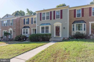 Centreville Townhouse For Sale: 13931 Water Pond Court