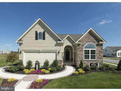 Smyrna Single Family Home For Sale: 1453 Climbing Vine Avenue