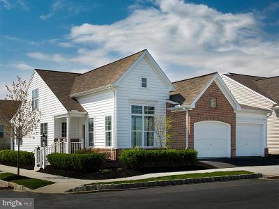 Strasburg Single Family Home For Sale: 205 McCarter Lane