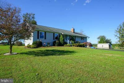 Warrenton Single Family Home For Sale: 8174 Chicory Lane