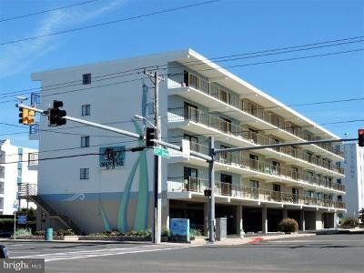 Ocean City Single Family Home For Sale: 14 133rd Street #101