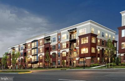Fairfax Condo For Sale: 3989 Norton Place #104