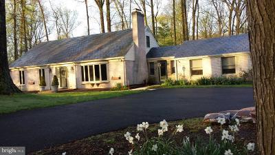Baltimore County Single Family Home For Sale: 1404 Margarette Avenue