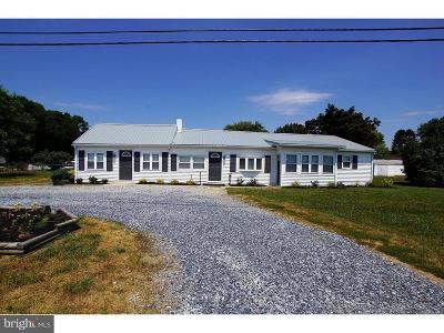 Dover Commercial For Sale: 2318 Forrest Avenue