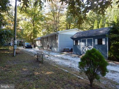 Lewes Single Family Home For Sale: 22951 Cypress Drive