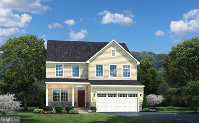 Prince William County, Fairfax County, Fredericksburg City, Fauquier County Single Family Home For Sale: Edmund Saul Court