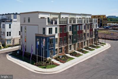 Townhouse For Sale: 4917 Trail Vista Lane