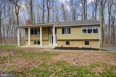 Hopewell Single Family Home For Sale: 137 Reservoir Road