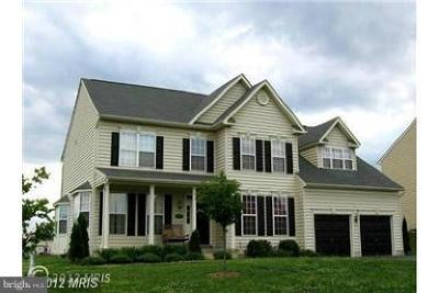 Hagerstown Single Family Home For Sale: 9530 Morning Walk Drive