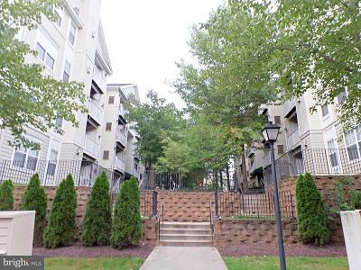 Upper Marlboro Condo For Sale: 13800 Farnsworth Lane #5101