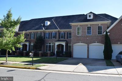 Leesburg Townhouse For Sale: 43595 Carradoc Farm Terrace