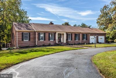 Fredericksburg Single Family Home For Sale: 485 Truslow Road