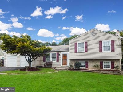 Damascus Single Family Home For Sale: 24741 Cutsail Drive