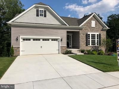 Single Family Home For Sale: 823 United Court