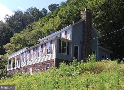 Frederick County, Harrisonburg City, Page County, Rockingham County, Shenandoah County, Warren County, Winchester City Single Family Home For Sale: 546 Ridgeley Road