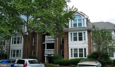 Reston VA Condo For Sale: $259,000