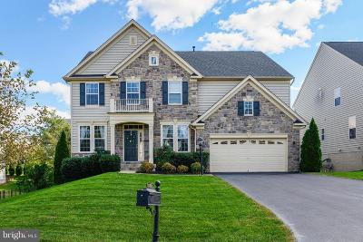 Haymarket Single Family Home For Sale: 14811 Keavy Ridge Court