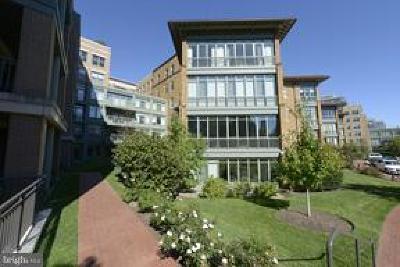 Washington Rental For Rent: 2425 L Street NW #520