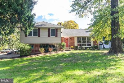 Chadds Ford Single Family Home For Sale: 858 Burrows Run Road