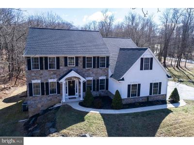 Single Family Home For Sale: 1071 Geigertown Road