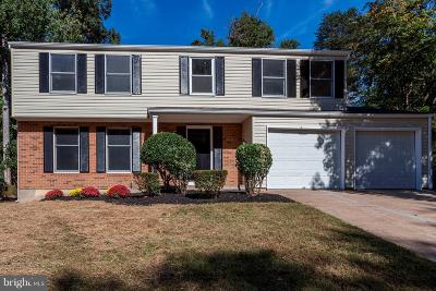 Prince William County Single Family Home For Sale: 3806 Dalebrook Drive