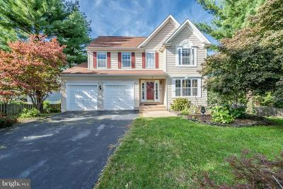 Leesburg Single Family Home For Sale: 411 Georgetown Court NE