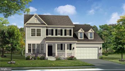 Frederick Single Family Home For Sale: Saxton Drive #COLTON I