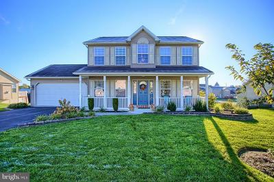 Dillsburg Single Family Home For Sale: 161 Martel Circle