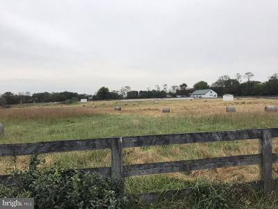 Purcellville Residential Lots & Land For Sale: 20210 Colchester Road