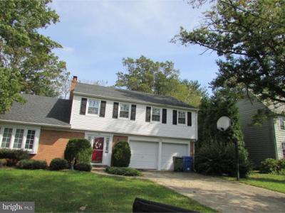 Cherry Hill Single Family Home For Sale: 310 Bortons Mill Road