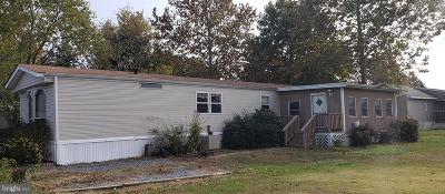 Millsboro Mobile/Manufactured For Sale: 35236 6th Street #32047