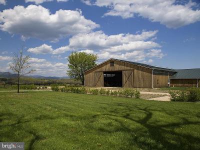 Greene County Farm For Sale: Fredericksburg Road