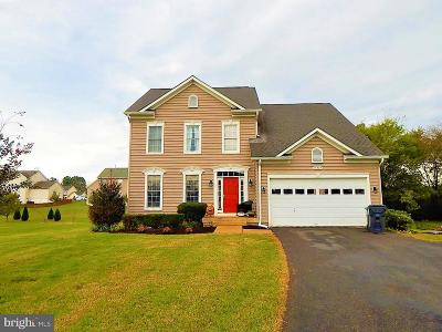 Culpeper County Single Family Home For Sale: 14407 Lee Hall Court