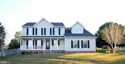 Fredericksburg Single Family Home For Sale: 11809 Fillmore Lane