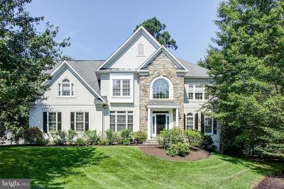 Fairfax County Single Family Home For Sale: 12112 Walnut Branch Road