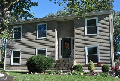 Warrenton Single Family Home For Sale: 7129 Alleghany Street