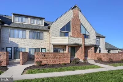 Harrisburg Condo For Sale: 606 Cherrington Drive