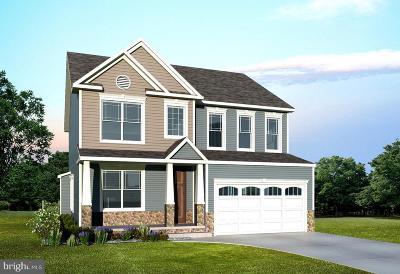 Severna Park Single Family Home For Sale: 921 Willow Lane