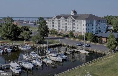 Dorchester County Condo For Sale: 700 Cattail Cove #411