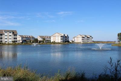 Ocean View Condo For Sale: 37400 Pettinaro Drive #2101